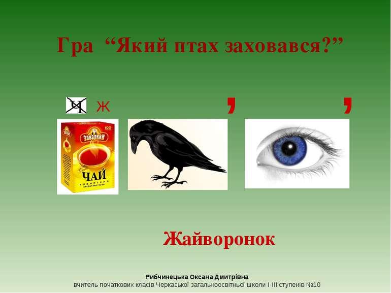 """Ж , , Гра """"Який птах заховався?"""" Жайворонок Рибчинецька Оксана Дмитрівна вчит..."""