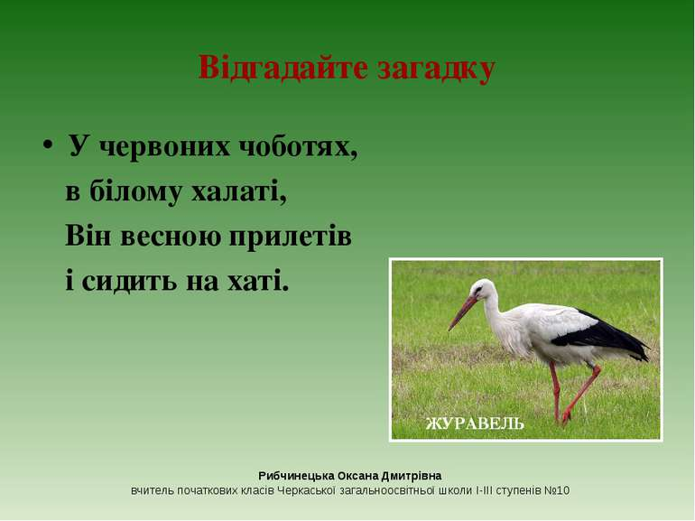 Відгадайте загадку У червоних чоботях, в білому халаті, Він весною прилетів і...