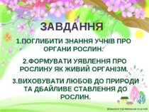 ЗАВДАННЯ 1.ПОГЛИБИТИ ЗНАННЯ УЧНІВ ПРО ОРГАНИ РОСЛИН. 2.ФОРМУВАТИ УЯВЛЕННЯ ПРО...