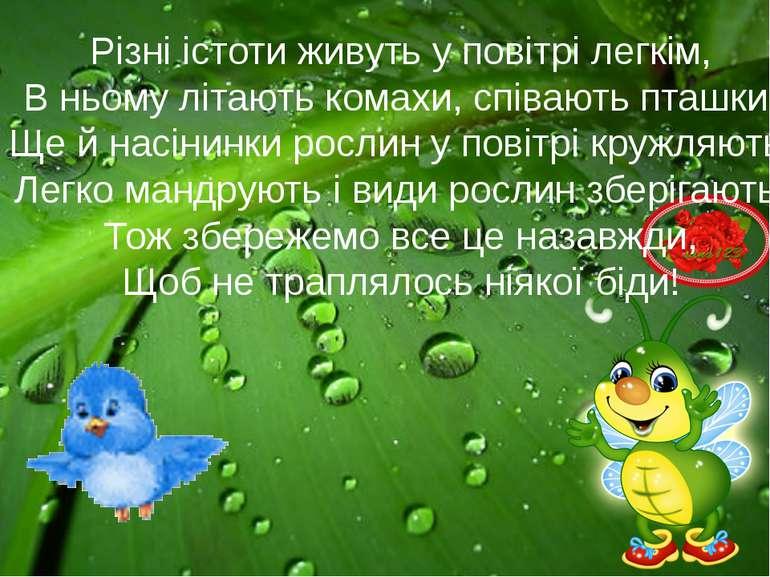 Різні істоти живуть у повітрі легкім, В ньому літають комахи, співають пташки...