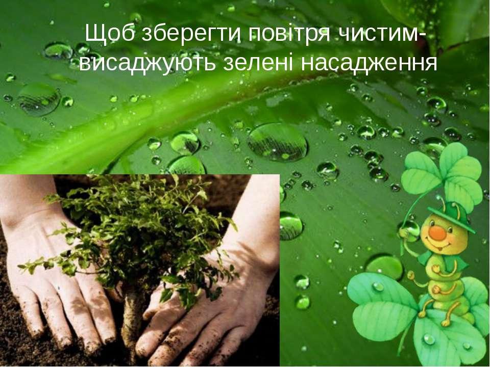 Щоб зберегти повітря чистим- висаджують зелені насадження