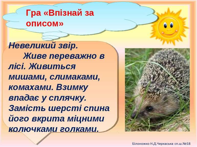 Гра «Впізнай за описом» Невеликий звір. Живе переважно в лісі. Живиться мишам...