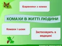 КОМАХИ В ЖИТТІ ЛЮДИНИ Білоножко Н.Д. Черкаська сп.ш.№18.