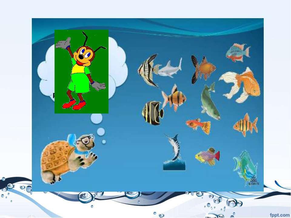 Рыбы живут в воде.