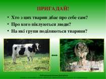 ПРИГАДАЙ! Хто з цих тварин дбає про себе сам? Про кого піклуються люди? На як...