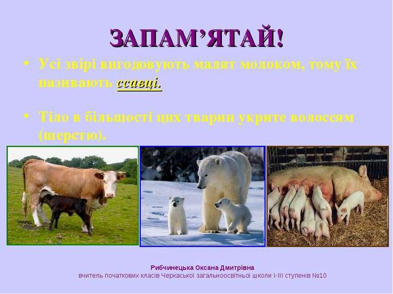 ЗАПАМ'ЯТАЙ! Усі звірі вигодовують малят молоком, тому їх називають ссавці. Ті...