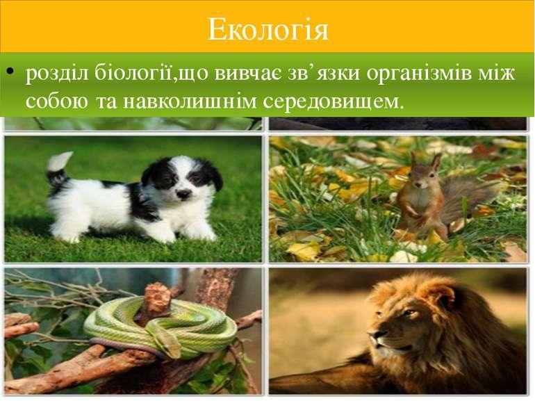 Екологія розділ біології,що вивчає зв'язки організмів між собою та навколишні...