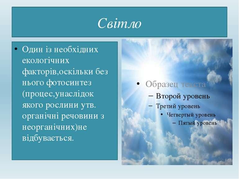 Світло Один із необхідних екологічних факторів,оскільки без нього фотосинтез ...