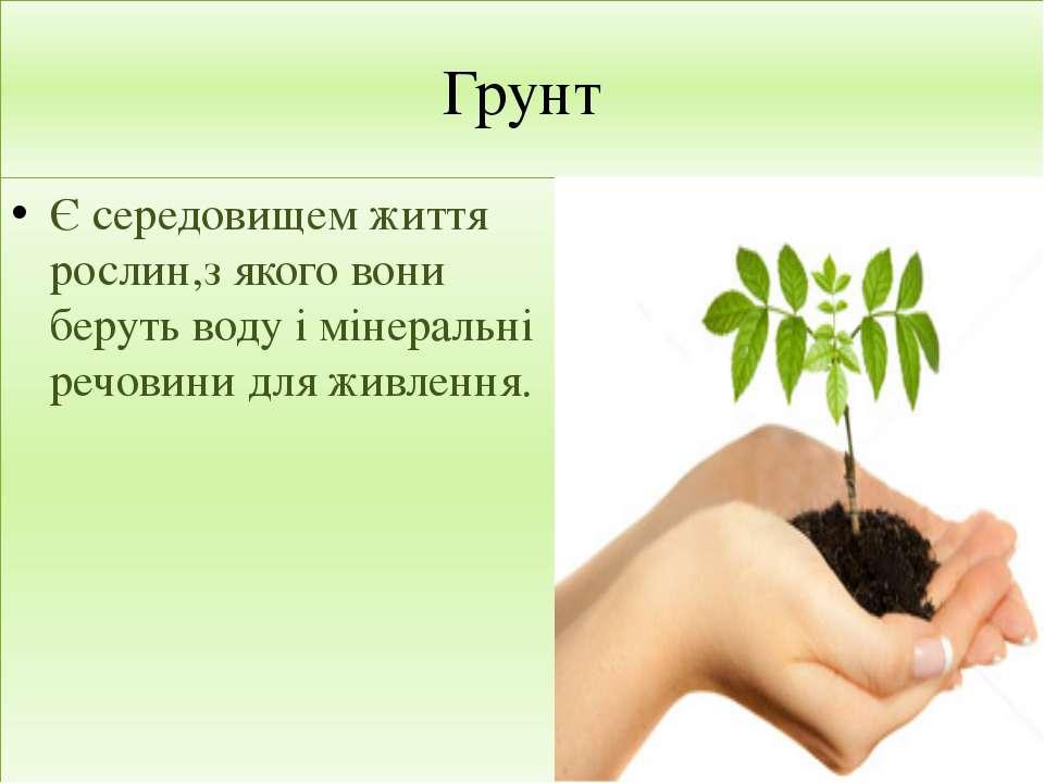 Грунт Є середовищем життя рослин,з якого вони беруть воду і мінеральні речови...