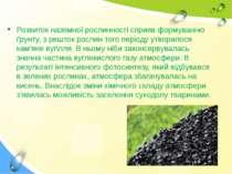 Розвиток наземної рослинності сприяв формуванню ґрунту, з решток рослин того ...