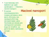 Насінні папороті У рослинному світі відбувся ще один ароморфоз — з'явились на...