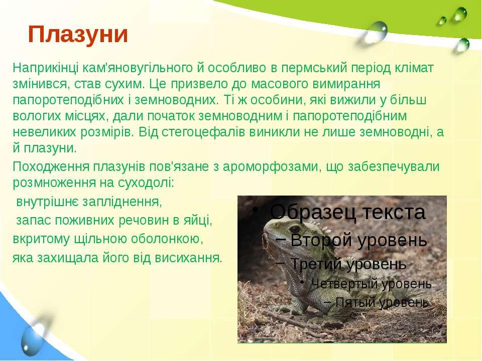 Плазуни Наприкінці кам'яновугільного й особливо в пермський період клімат змі...