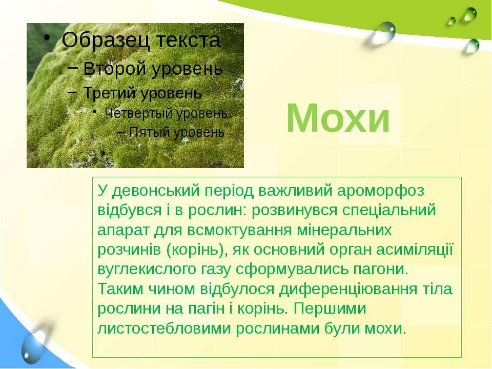 Мохи У девонський період важливий ароморфоз відбувся і в рослин: розвинувся с...