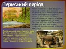 Пермський період Клімат пермського періоду був досить сухим. Вічнозелені ліси...
