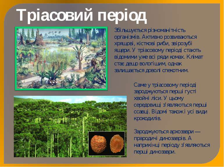 Тріасовий період Збільшується різноманітність організмів. Активно розвиваютьс...