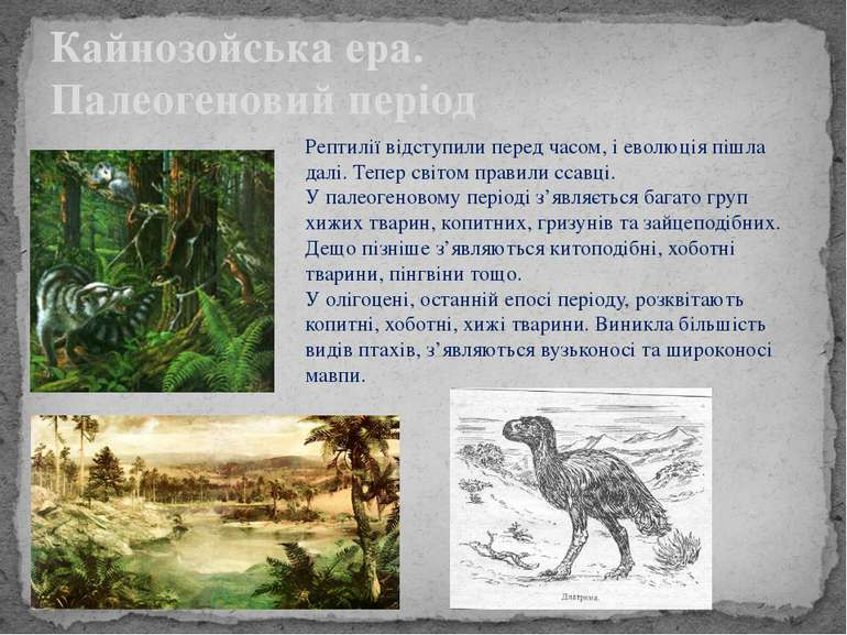 Кайнозойська ера. Палеогеновий період Рептилії відступили перед часом, і евол...