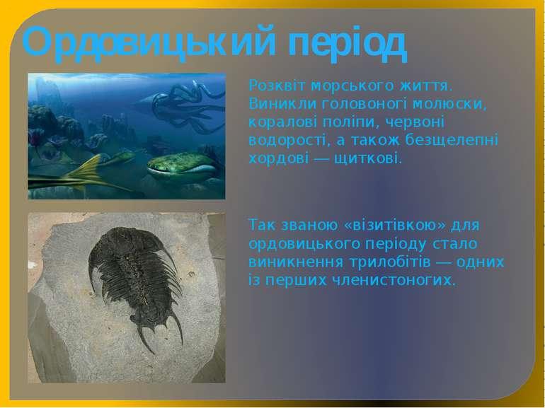 Ордовицький період Розквіт морського життя. Виникли головоногі молюски, корал...
