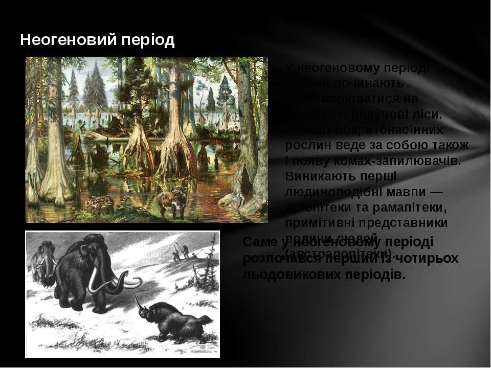 Неогеновий період У неогеновому періоді савани починають перетворюватися на б...