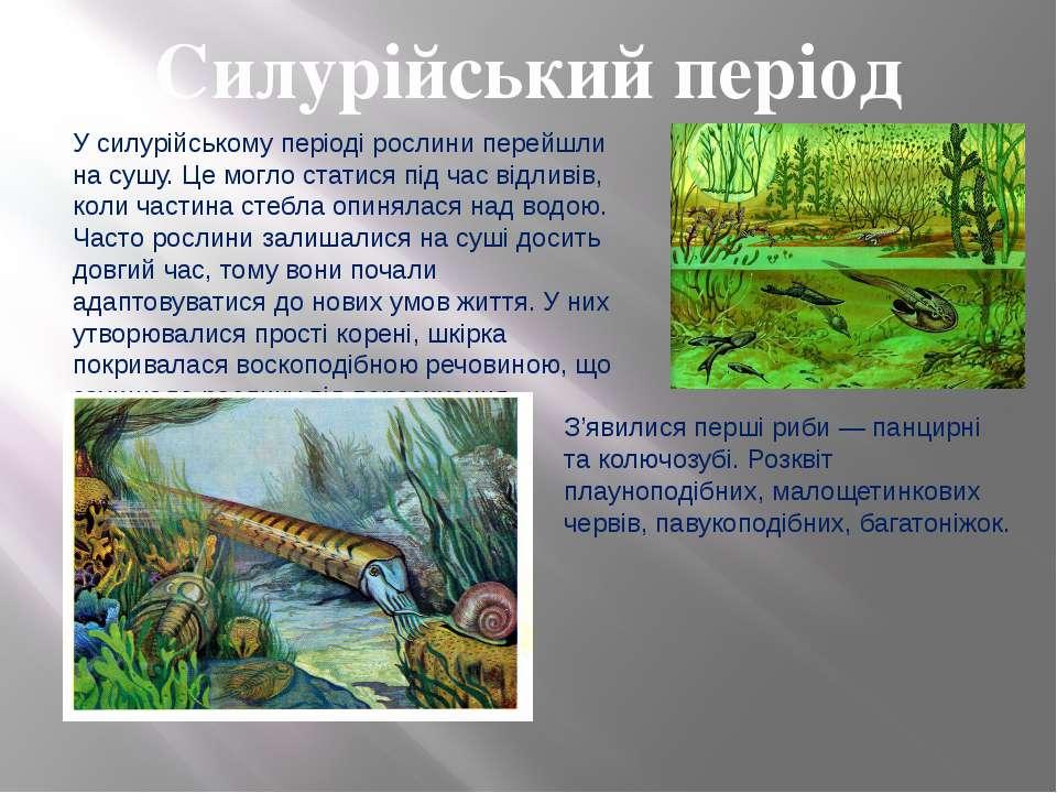 Силурійський період У силурійському періоді рослини перейшли на сушу. Це могл...
