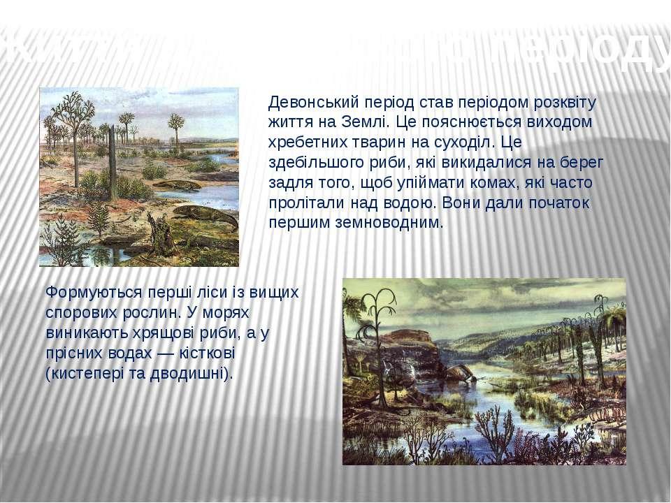 Життя девонського періоду Девонський період став періодом розквіту життя на З...