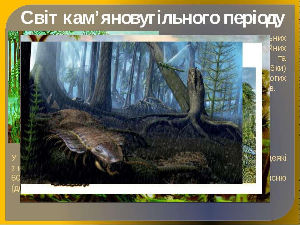 Світ кам'яновугільного періоду Розквіт кам'яновугільних лісів, поява перших х...