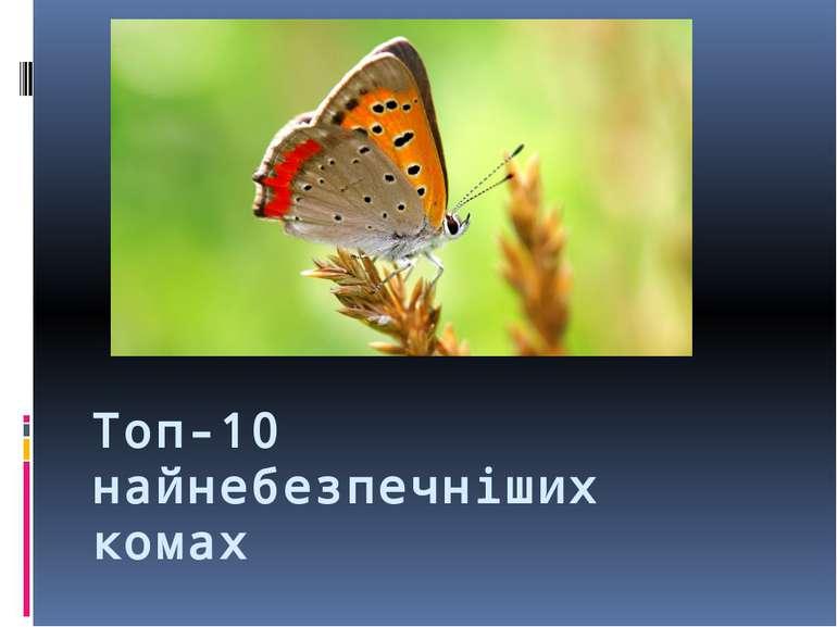 Топ-10 найнебезпечніших комах