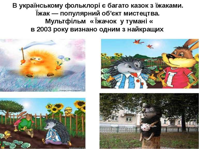 В українському фольклорі є багато казок з їжаками. Їжак— популярний об'єкт м...