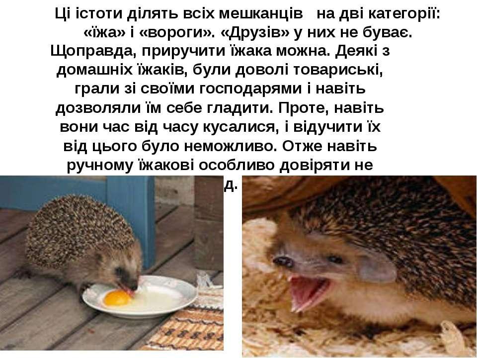 Ці істоти ділять всіх мешканців на дві категорії: «їжа» і «вороги». «Друзів» ...