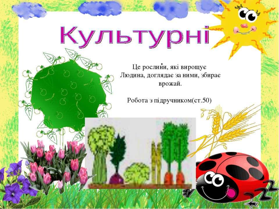 . Це рослини, які вирощує Людина, доглядає за ними, збирає врожай. Робота з п...