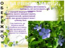 БАРВІНОК МАЛИЙ З барвінку виготовляють препарати, які застосовують при головн...