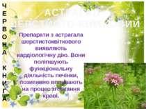 АСТРАГАЛ ШЕРСТИСТО-КВІТКОВИЙ Препарати з астрагала шерстистоквіткового виявля...