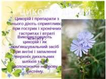 ЦИКОРІЙ ДИКИЙ Цикорій i препарати з нього дiють сприятливо при гострих i хрон...