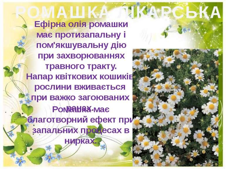 РОМАШКА ЛІКАРСЬКА Ефiрна олiя ромашки має протизапальну i пом'якшувальну дiю ...