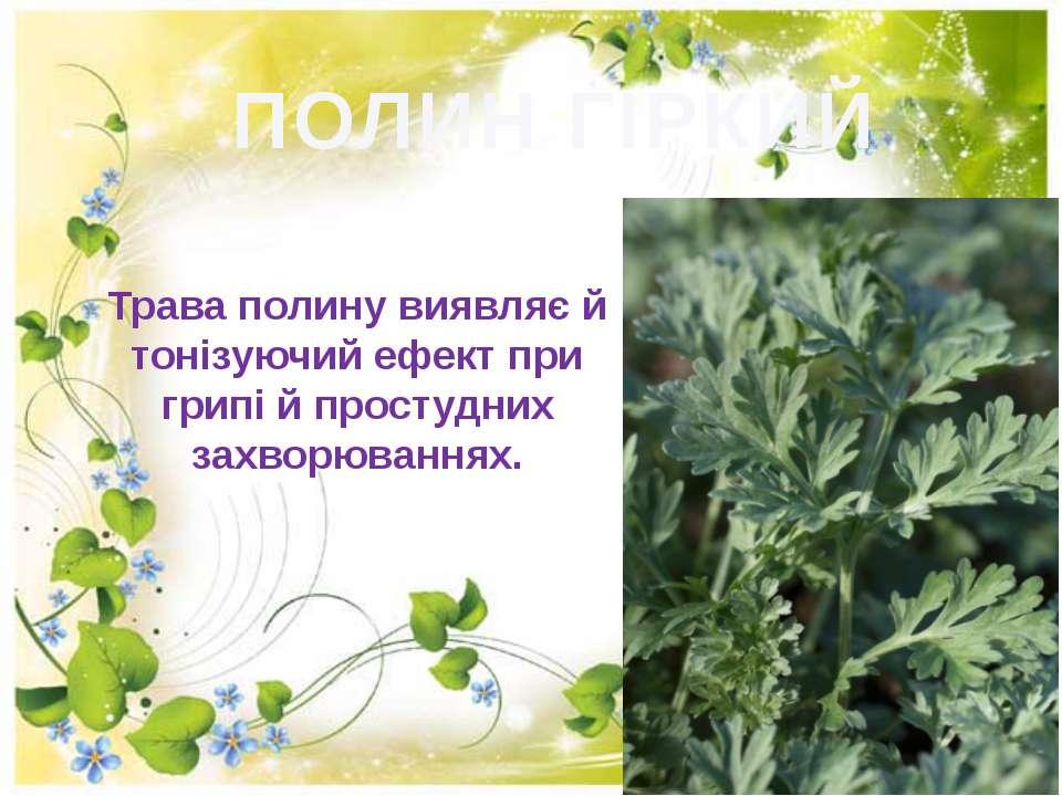 ПОЛИН ГІРКИЙ Трава полину виявляє й тонiзуючий ефект при грипi й простудних з...