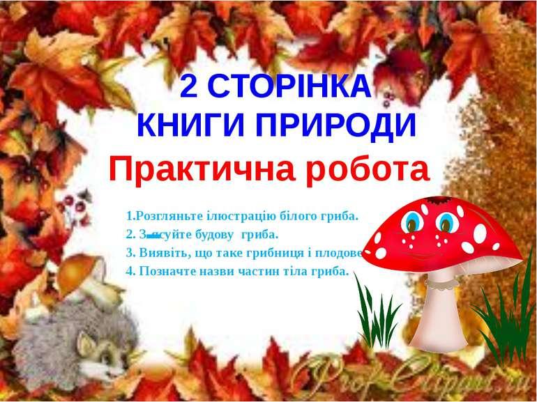 2 СТОРІНКА КНИГИ ПРИРОДИ Практична робота 1.Розгляньте ілюстрацію білого гриб...