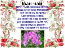 Іван-чай ІВАН-ЧАЙ, рожева квітка, Вища хлопчика Микитки! Той конячку запряга ...