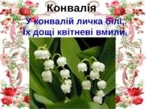 Конвалія У конвалій личка білі, Їх дощі квітневі вмили.