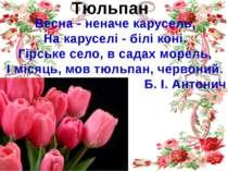 Тюльпан Весна - неначе карусель, На каруселі - білі коні. Гірське село, в сад...