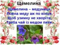 Щемелина Щемелина – медуниця, Повна меду аж по вінця. Щоб узимку не хворіти, ...