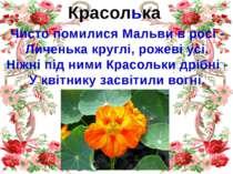 Красолька Чисто помилися Мальви в росі - Личенька круглі, рожеві усі. Ніжні п...