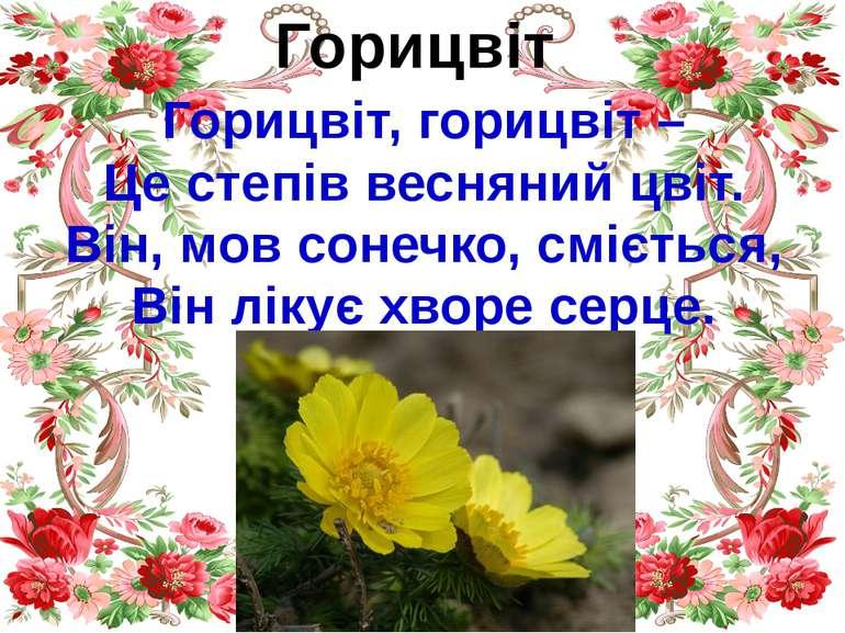 Горицвіт Горицвіт, горицвіт – Це степів весняний цвіт. Він, мов сонечко, сміє...