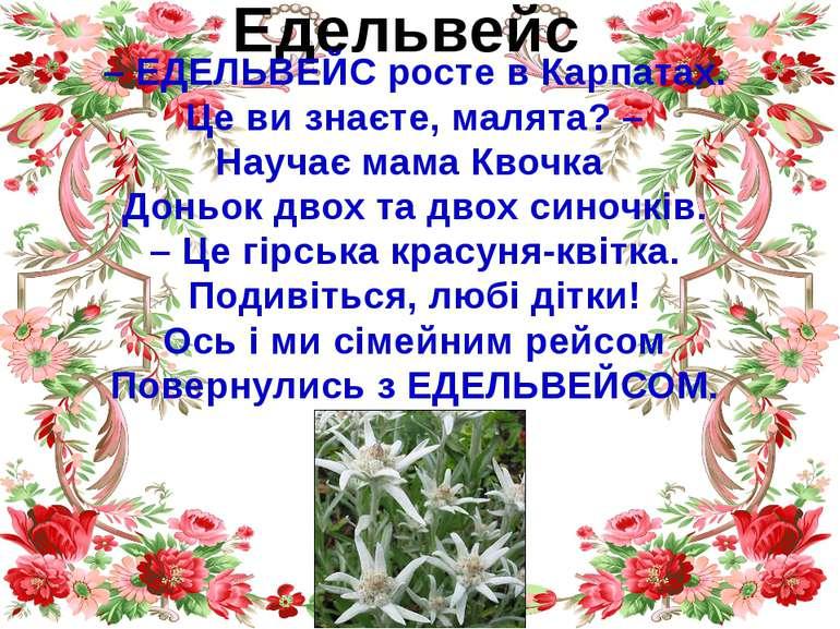 Едельвейс – ЕДЕЛЬВЕЙС росте в Карпатах. Це ви знаєте, малята? – Научає мама К...