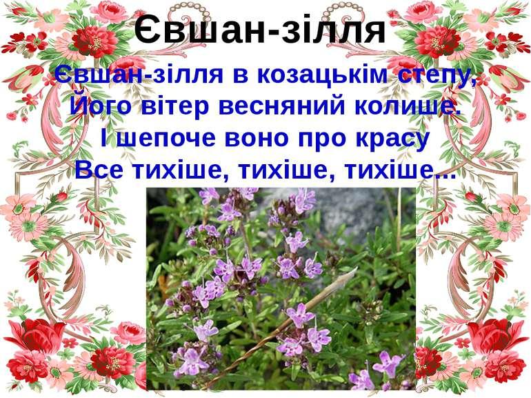 Євшан-зілля Євшан-зілля в козацькім степу, Його вітер весняний колише. І шепо...
