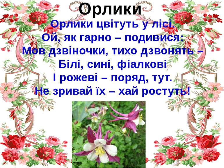 Орлики Орлики цвітуть у лісі. Ой, як гарно – подивися: Мов дзвіночки, тихо дз...