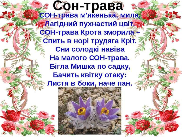 Сон-трава СОН-трава м'якенька, мила, Лагідний пухнастий цвіт. СОН-трава Крота...