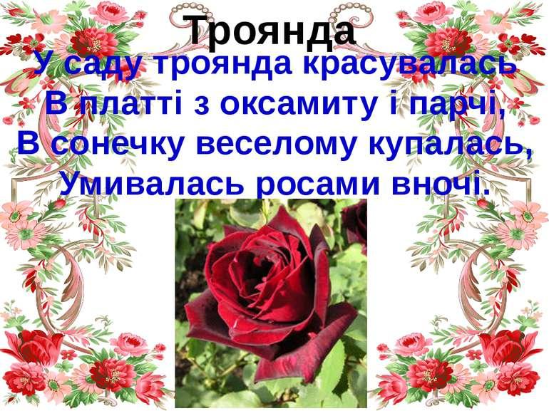 Троянда У саду троянда красувалась В платті з оксамиту і парчі, В сонечку вес...