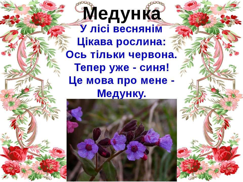 Медунка У лісі веснянім Цікава рослина: Ось тільки червона. Тепер уже - синя!...