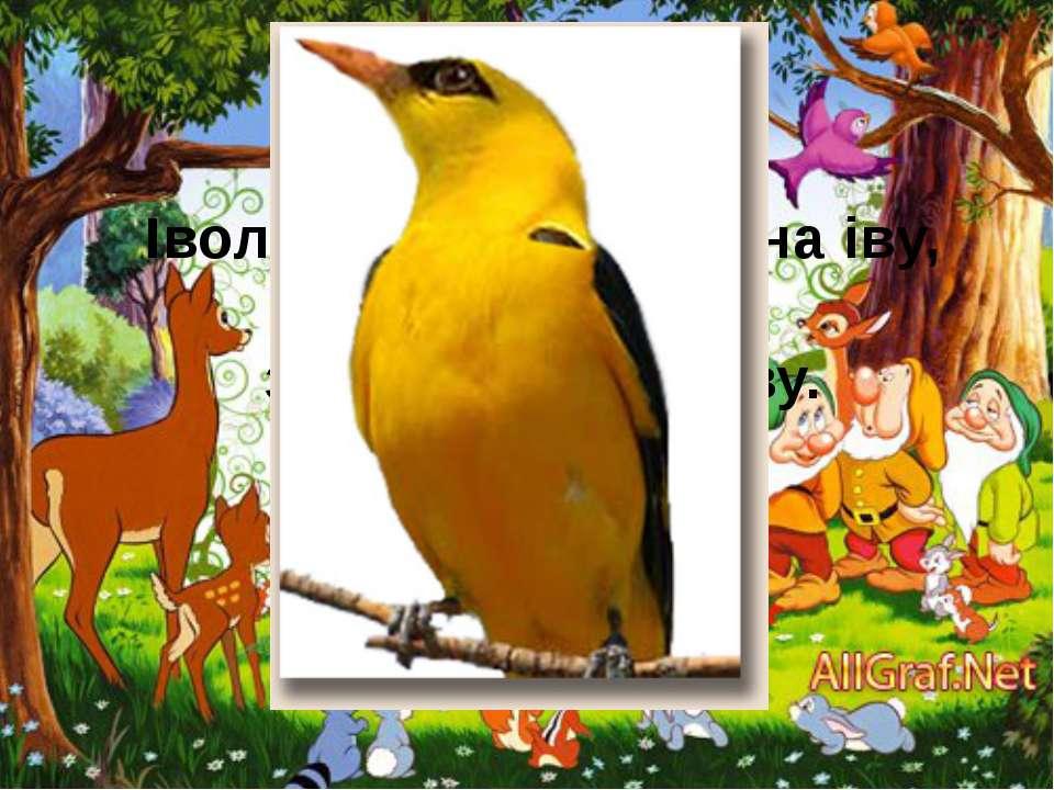 Індик Ю.Трофімов Індик - поважна, горда птиця, Він нікого не боїться.