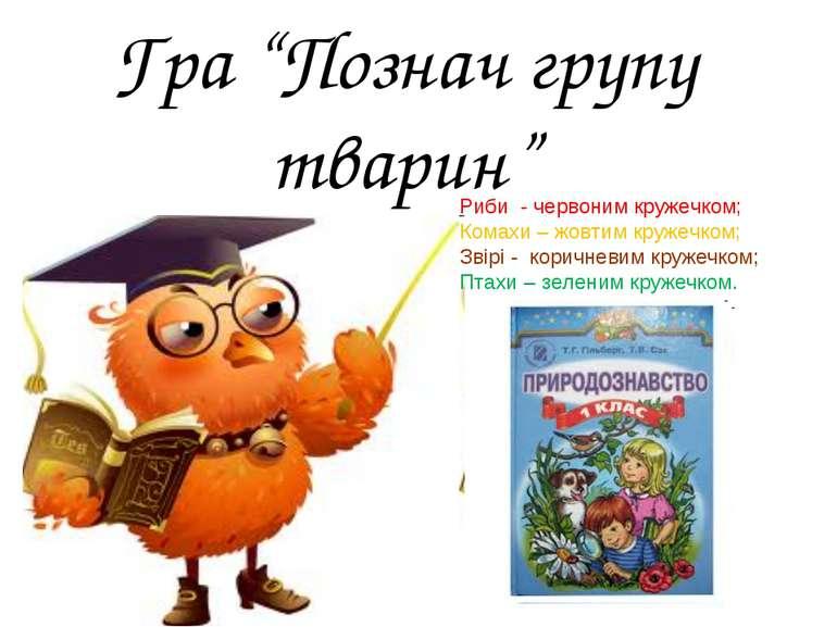 """Гра """"Познач групу тварин"""" Риби - червоним кружечком; Комахи – жовтим кружечко..."""