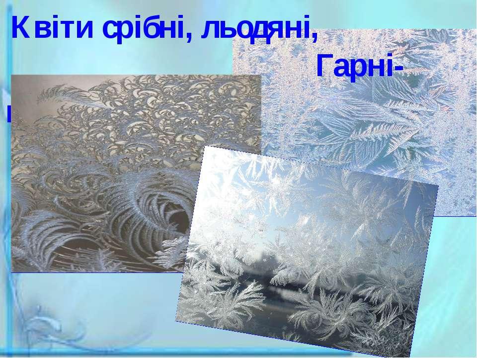 Квіти срібні, льодяні, Гарні-гарні, як у сні!